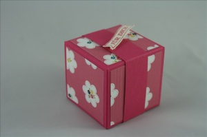 StampinUp_Bastelig-ES_Box_Dankeschön_Taufe_Praline2