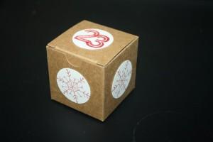 Bastelig-ES_Mini-Geschenkschachteln_WuenscheZumFest_Adventskalender_StampinUp_1