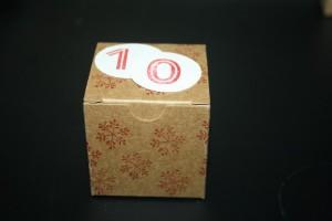 Bastelig-ES_Mini-Geschenkschachteln_WuenscheZumFest_Adventskalender_StampinUp_4