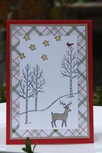 Bastelig-ES_StampinUp_Esslingen_12WochenbisWeihnachten_Tannenbaum_PeacefulWreath_WeißeWeihnacht_3
