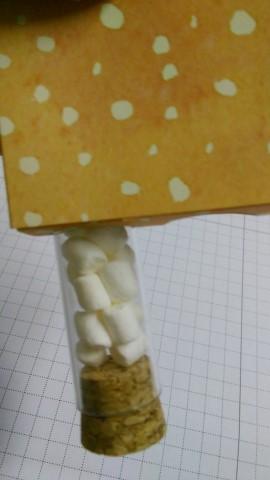 Bastelig-ES.de_StampinUp_Herbstimpressionen_Geschenkset_Süßigkeiten-Röhrchen_Mini-Pizzaschachtel_05
